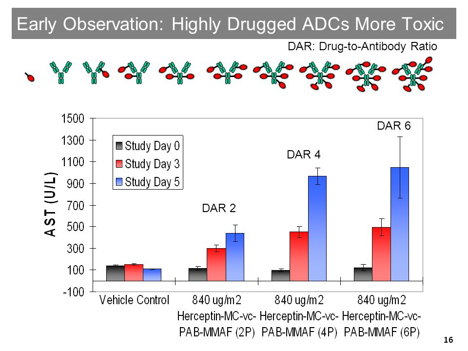 Early Observation: Highly Drugged ADCs More Toxic DAR 2 DAR 4 DAR 6 DAR: Drug-to-Antibody Ratio DAR 2 DAR 4 DAR 6 16