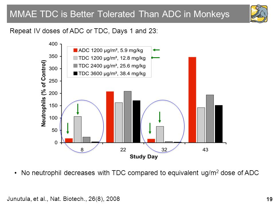 MMAE TDC is Better Tolerated Than ADC in Monkeys Junutula, et al., Nat. Biotech., 26(8), 2008 •No neutrophil decreases with TDC compared to equivalent