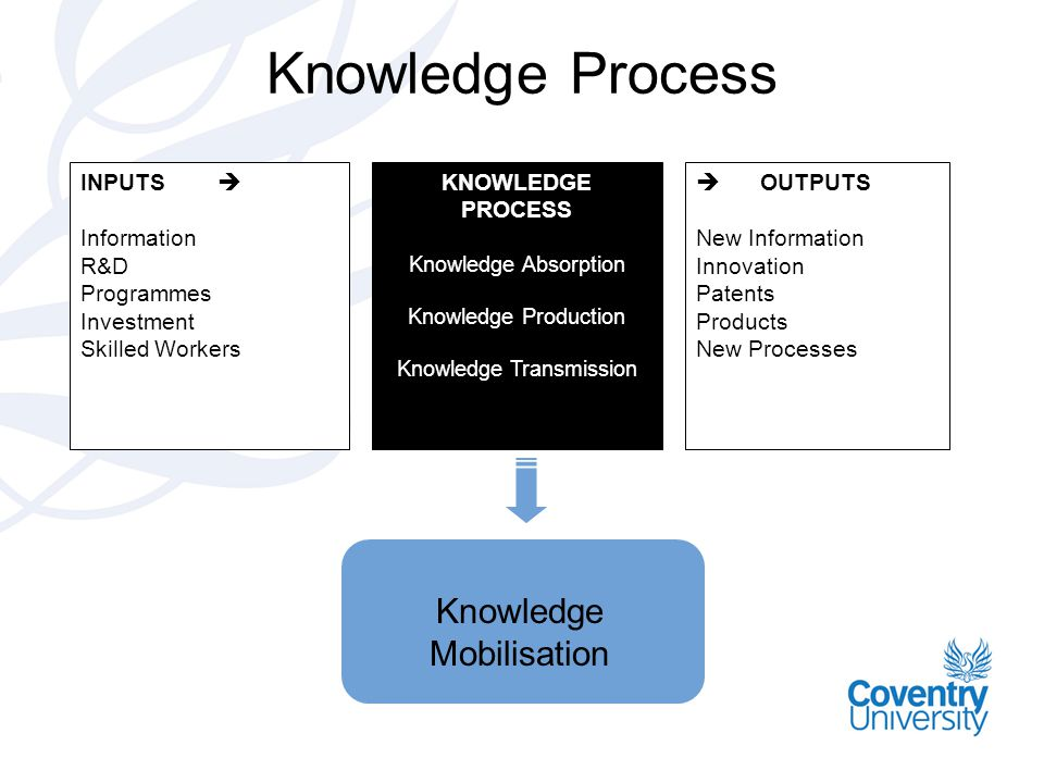 Knowledge Process INPUTS  Information R&D Programmes Investment Skilled Workers KNOWLEDGE PROCESS Knowledge Absorption Knowledge Production Knowledge