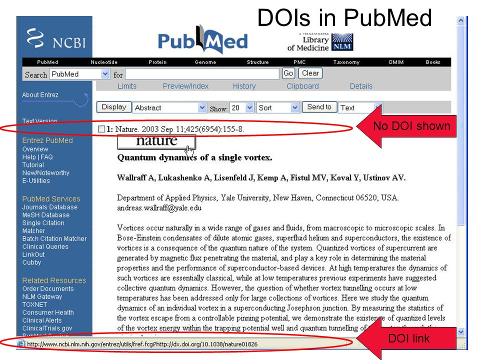 DOIs in PubMed DOI link No DOI shown
