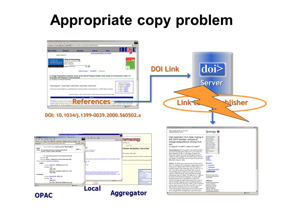 Appropriate copy problem Aggregator Local OPAC