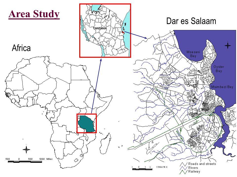 Dar es Salaam Africa Area Study