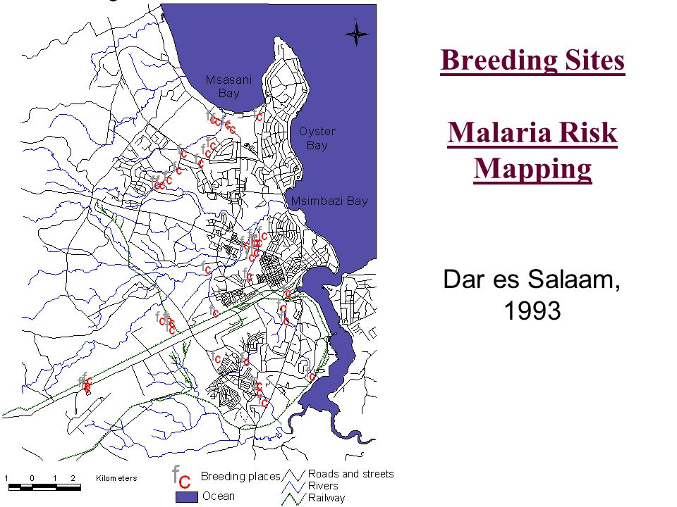 Breeding Sites Malaria Risk Mapping Dar es Salaam, 1993