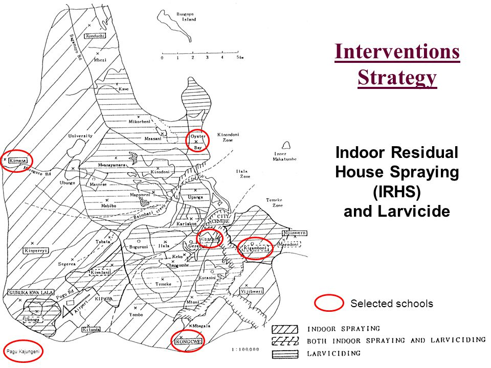 Interventions Strategy Indoor Residual House Spraying (IRHS) and Larvicide Kisarawe Pagu Kajungeni Selected schools