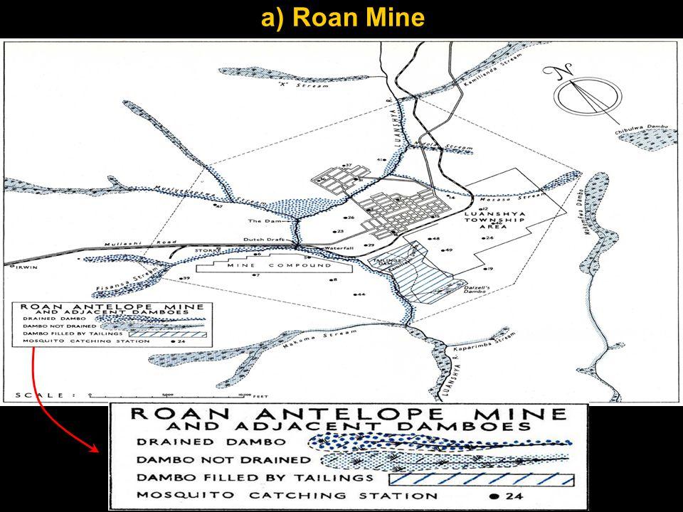 a) Roan Mine