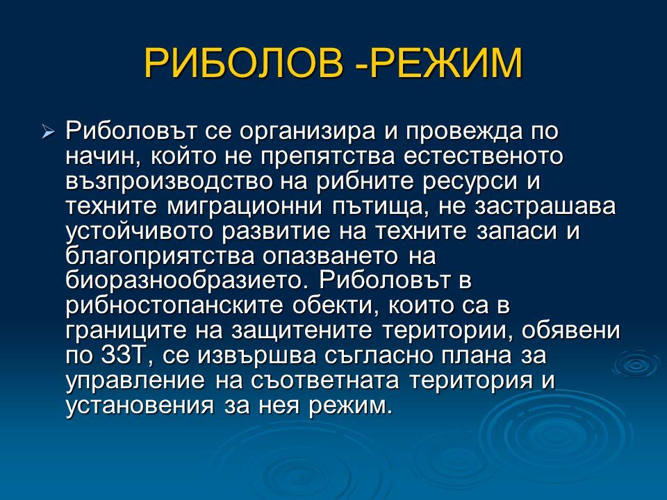 РИБОЛОВ -РЕЖИМ  Риболовът се организира и провежда по начин, който не препятства естественото възпроизводство на рибните ресурси и техните миграционни пътища, не застрашава устойчивото развитие на техните запаси и благоприятства опазването на биоразнообразието.