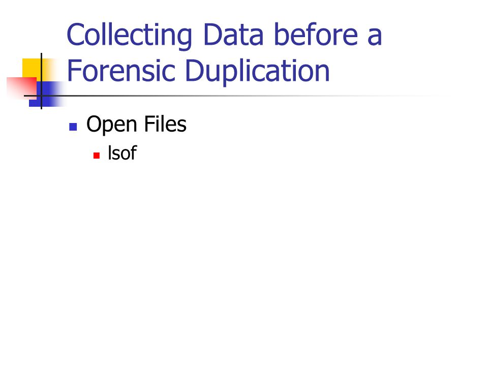 Collecting Data before a Forensic Duplication  Open Files  lsof