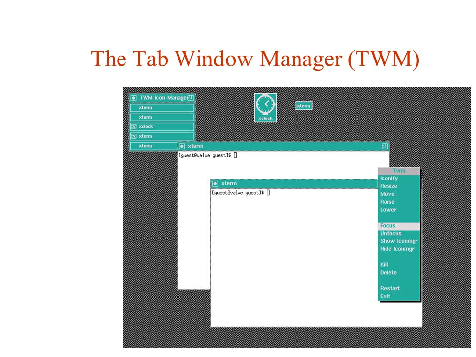 The Tab Window Manager (TWM)