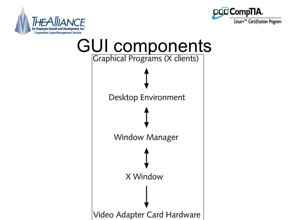 The X Windows system •X Windows –The component of the GUI that displays graphics on the terminal screen •X clients –The programs that tell X Windows server how to draw the graphics and display the results