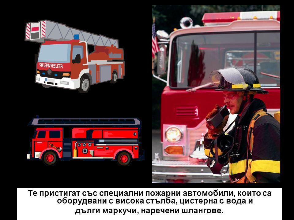 Те пристигат със специални пожарни автомобили, които са оборудвани с висока стълба, цистерна с вода и дълги маркучи, наречени шлангове.