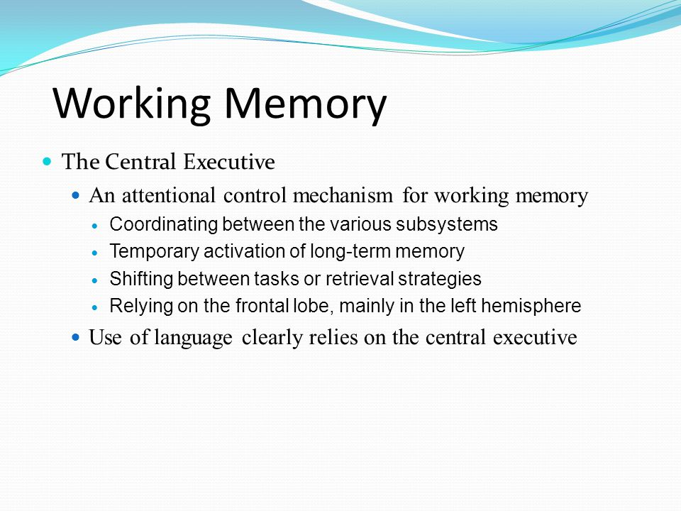 Working Memory  The Central Executive  An attentional control mechanism for working memory  Coordinating between the various subsystems  Temporary activation of long-term memory  Shifting between tasks or retrieval strategies  Relying on the frontal lobe, mainly in the left hemisphere  Use of language clearly relies on the central executive