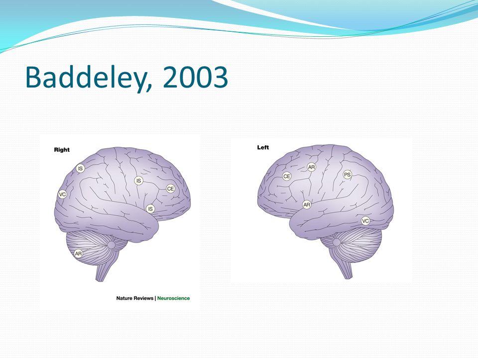 Baddeley, 2003