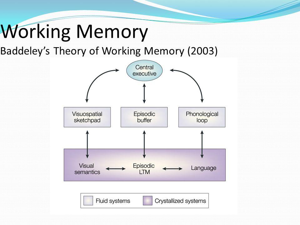 Working Memory Baddeley's Theory of Working Memory (2003)