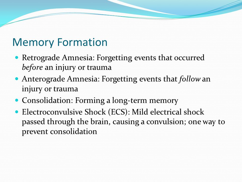 Memory Formation  Retrograde Amnesia: Forgetting events that occurred before an injury or trauma  Anterograde Amnesia: Forgetting events that follow an injury or trauma  Consolidation: Forming a long-term memory  Electroconvulsive Shock (ECS): Mild electrical shock passed through the brain, causing a convulsion; one way to prevent consolidation