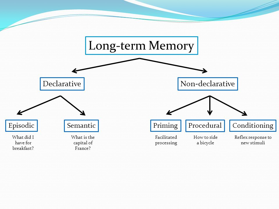Long-term Memory DeclarativeNon-declarative SemanticEpisodicPrimingProceduralConditioning What did I have for breakfast.
