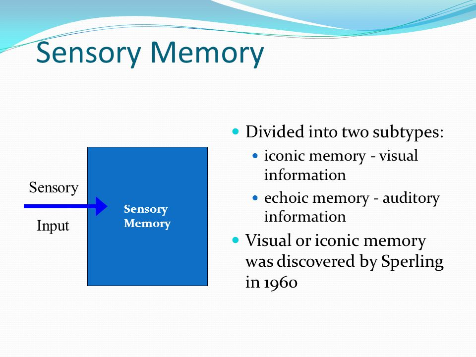 Sensory Memory  Divided into two subtypes:  iconic memory - visual information  echoic memory - auditory information  Visual or iconic memory was discovered by Sperling in 1960 Sensory Input Sensory Memory