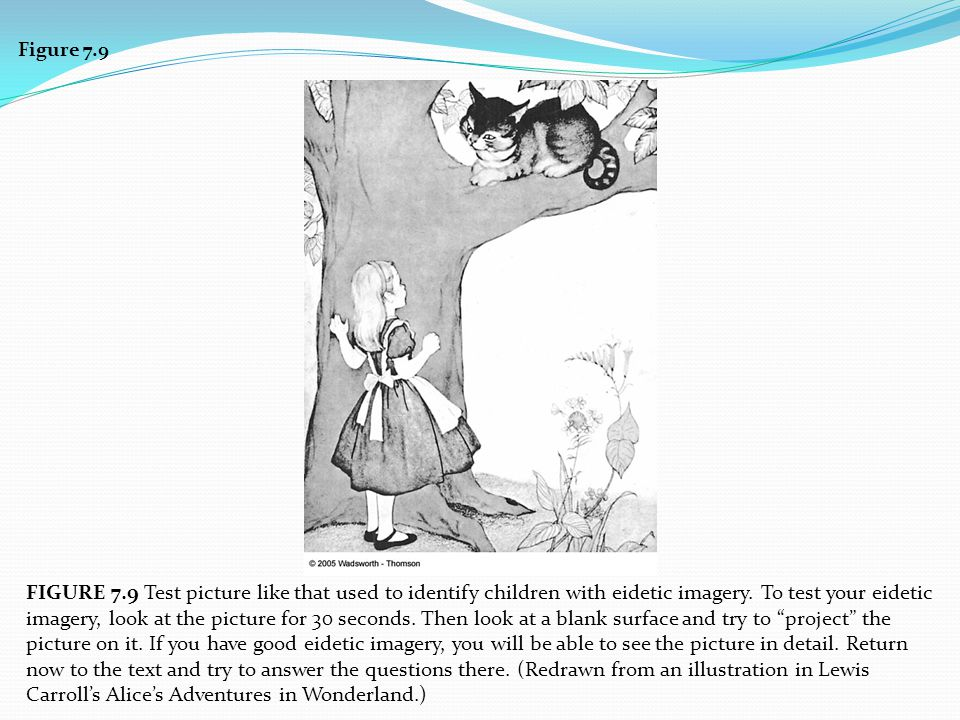 Figure 7.9 FIGURE 7.9 Test picture like that used to identify children with eidetic imagery. To test your eidetic imagery, look at the picture for 30