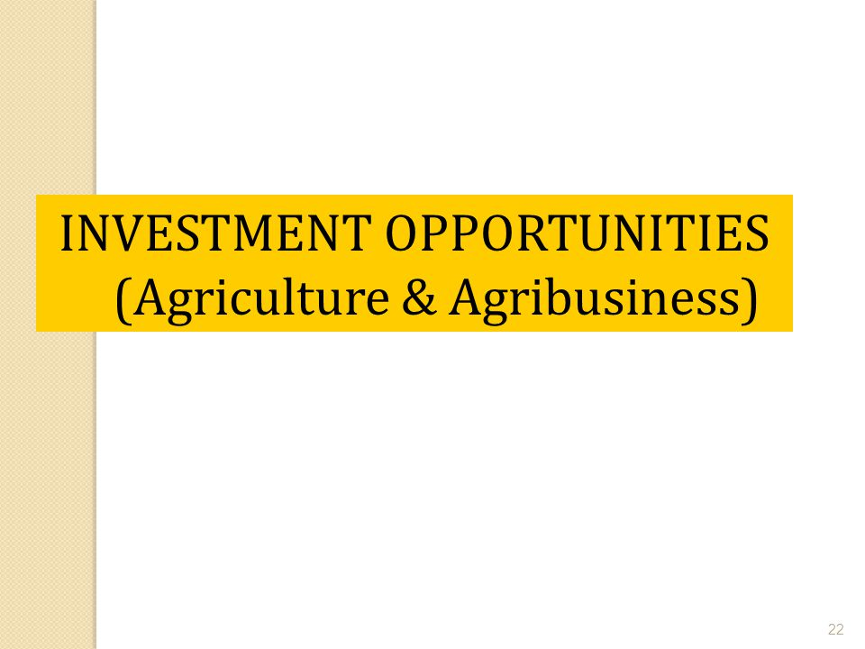 22 INVESTMENT OPPORTUNITIES (Agriculture & Agribusiness)
