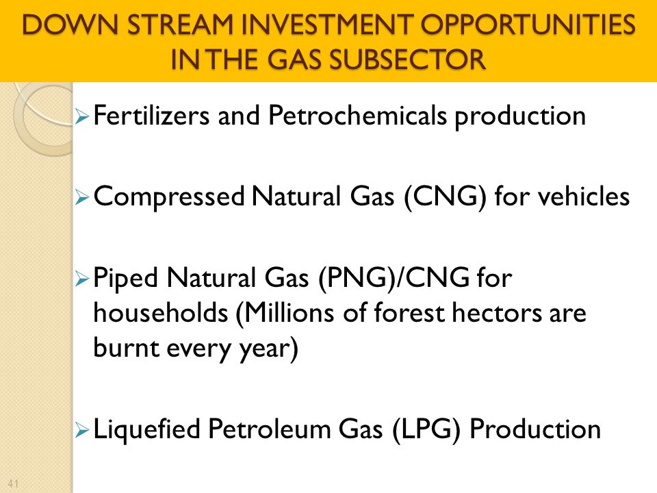 DOWN STREAM INVESTMENT OPPORTUNITIES IN THE GAS SUBSECTOR  Fertilizers and Petrochemicals production  Compressed Natural Gas (CNG) for vehicles  Piped Natural Gas (PNG)/CNG for households (Millions of forest hectors are burnt every year)  Liquefied Petroleum Gas (LPG) Production 41