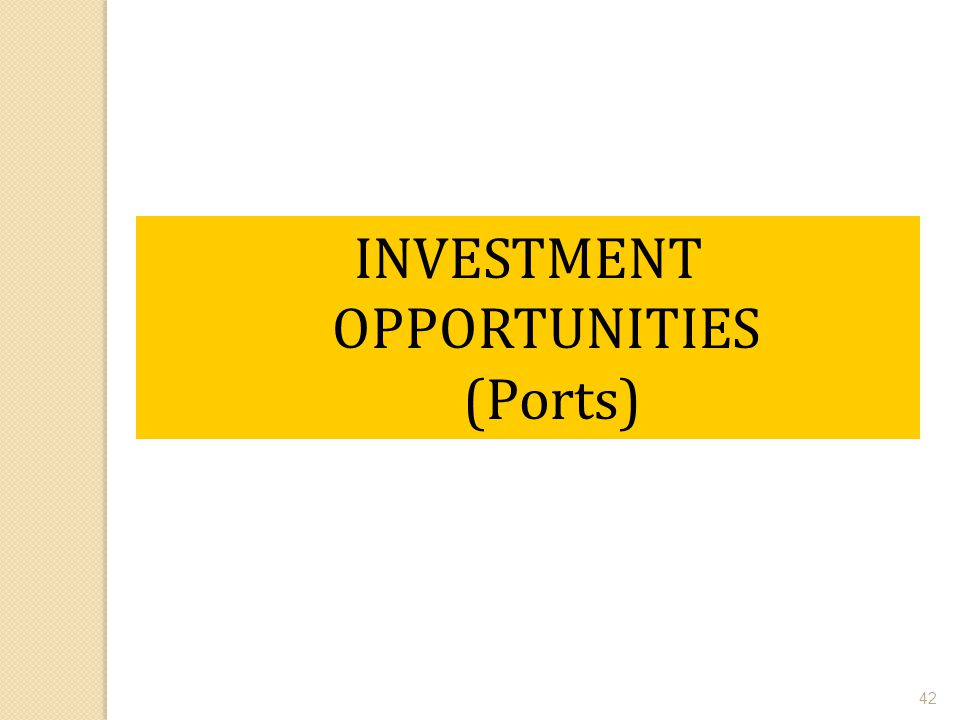 42 INVESTMENT OPPORTUNITIES (Ports)