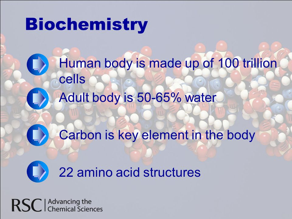 Biochemistry Human body is made up of 100 trillion cells Adult body is 50-65% water Carbon is key element in the body 22 amino acid structures