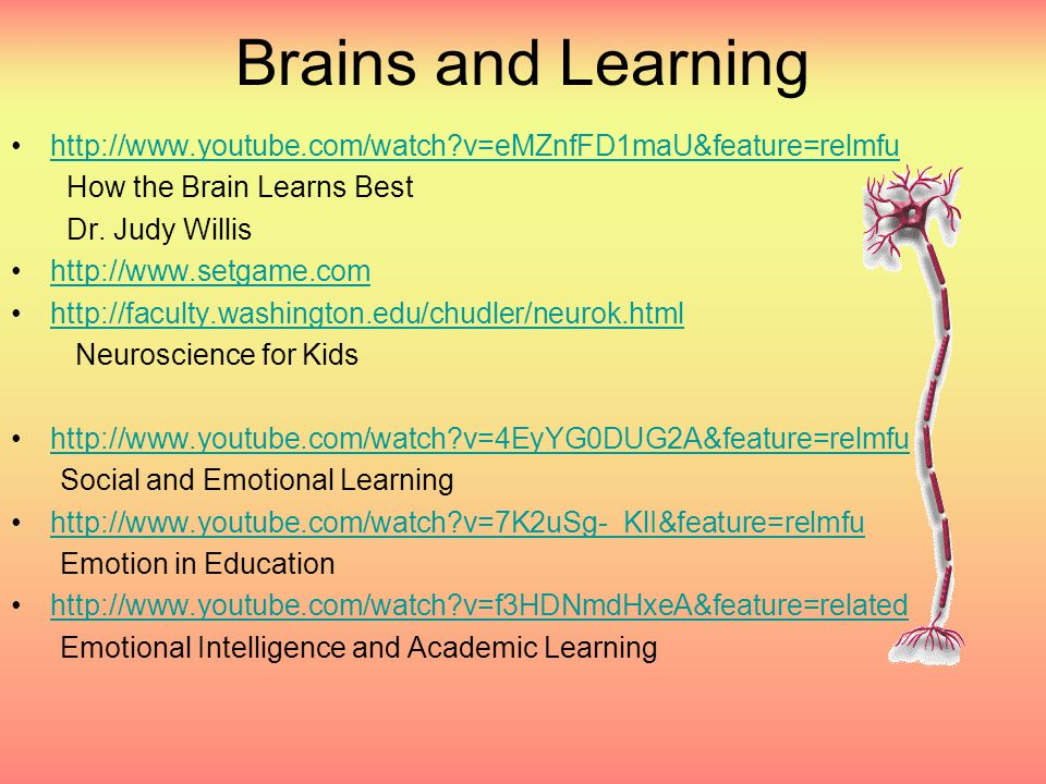 Brains and Learning •http://www.youtube.com/watch v=eMZnfFD1maU&feature=relmfuhttp://www.youtube.com/watch v=eMZnfFD1maU&feature=relmfu How the Brain Learns Best Dr.