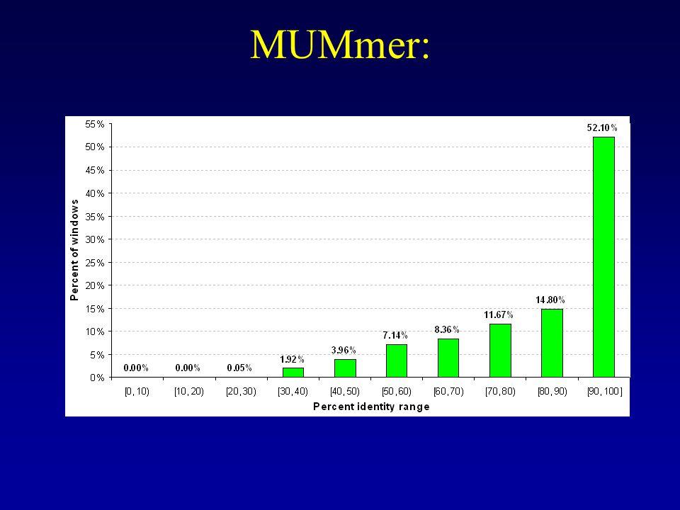MUMmer: