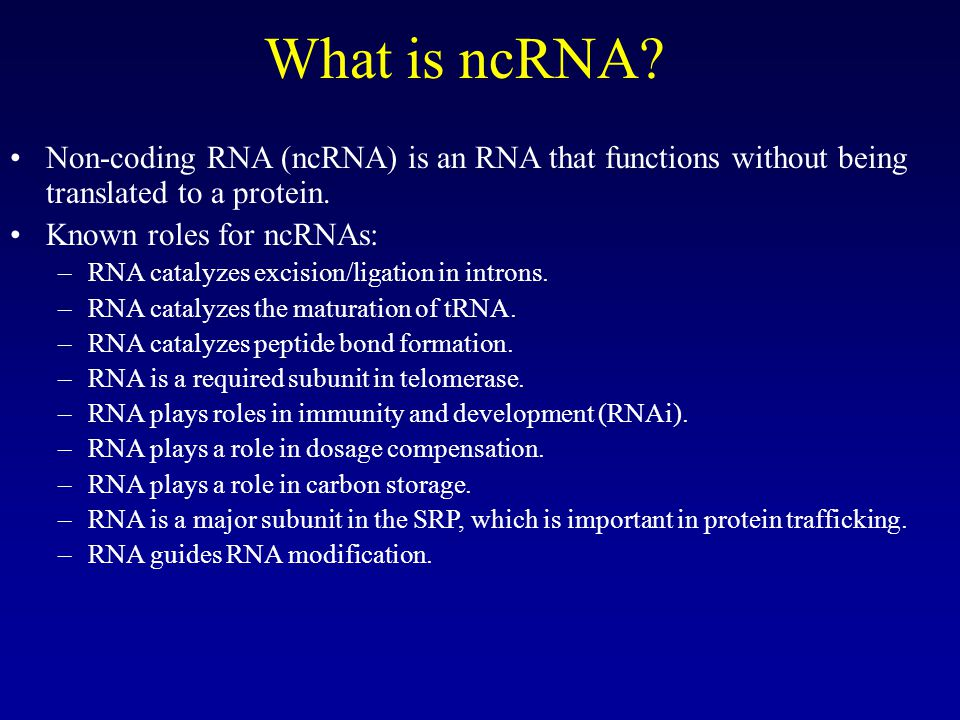 What is ncRNA.