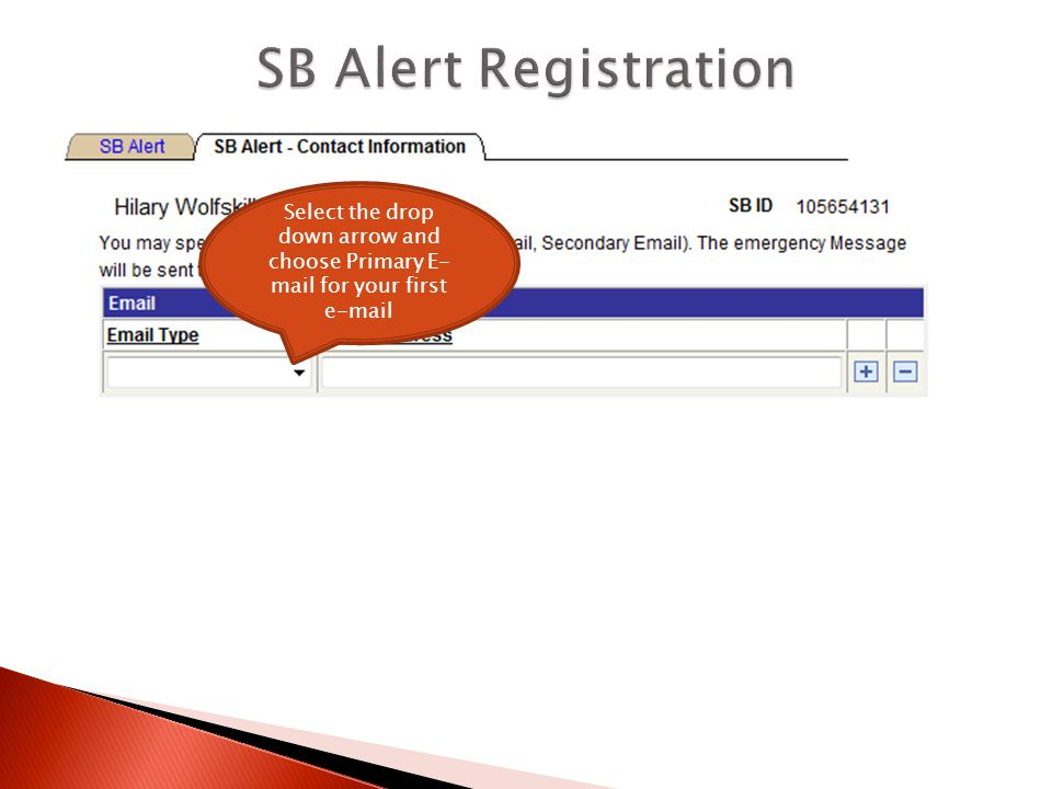 Enter your e-mail address To enter a second e-mail address, click the plus symbol and enter information.