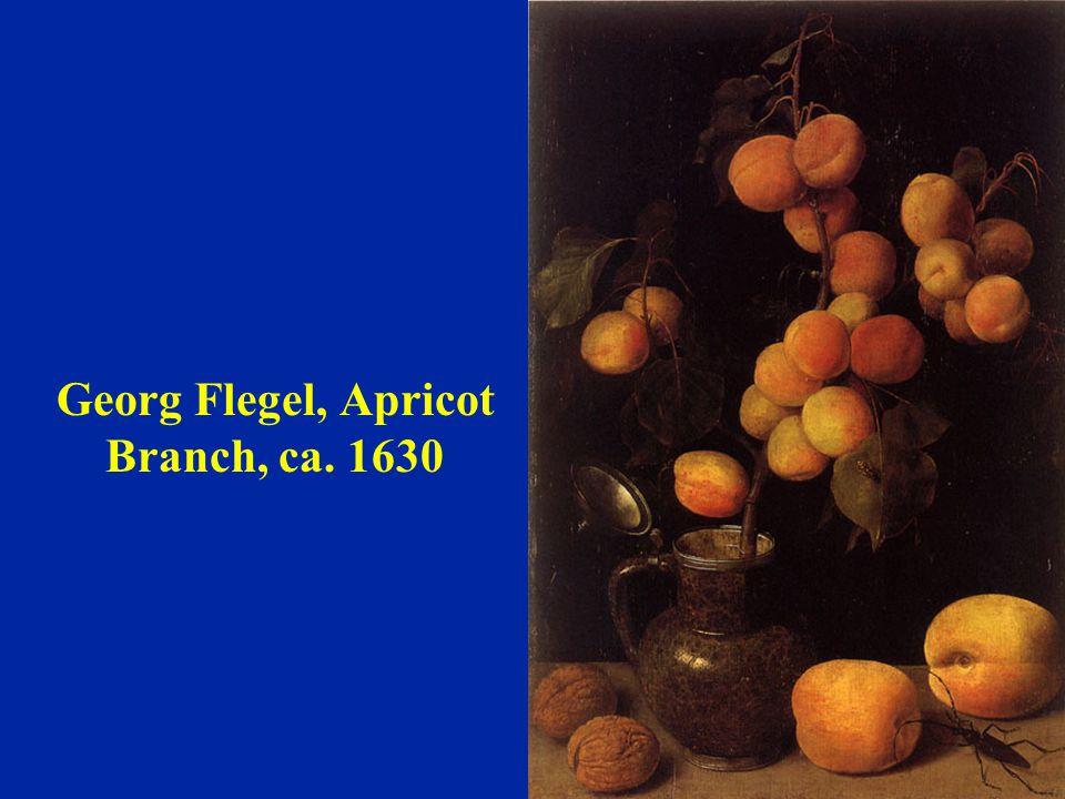 'Nancy' peach-apricot hybrid Pierre J.F. Turpin, 1768