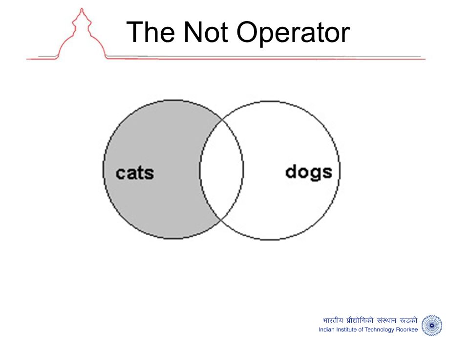 The Not Operator