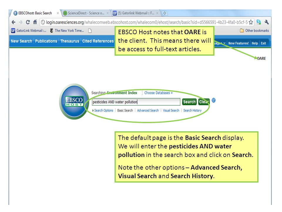 The default page is the Basic Search display.
