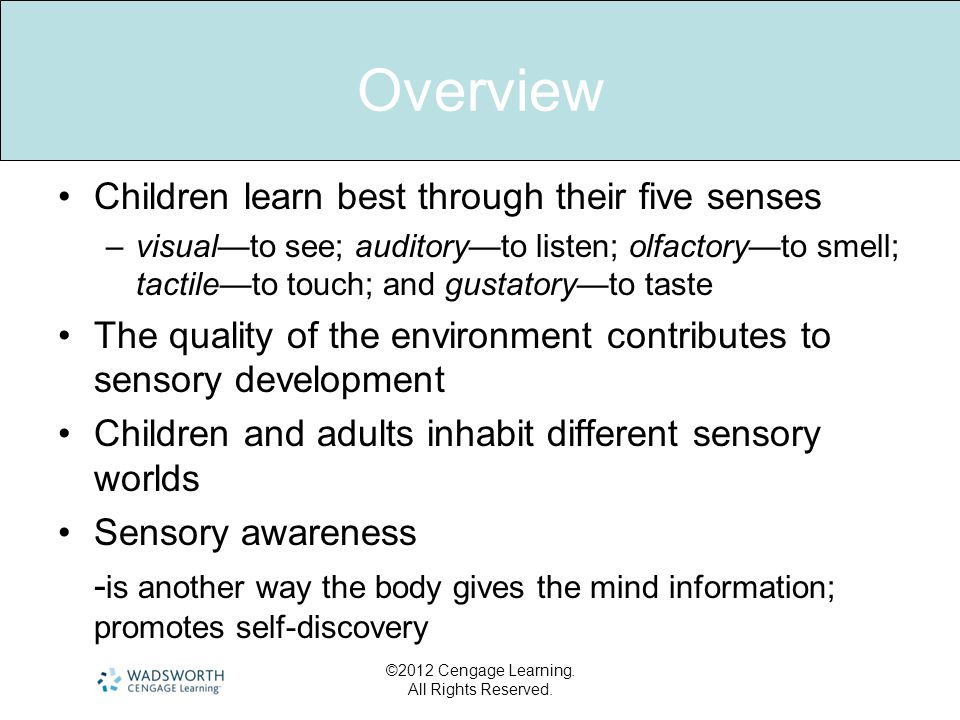 ©2012 Cengage Learning. All Rights Reserved. Overview •Children learn best through their five senses –visual—to see; auditory—to listen; olfactory—to