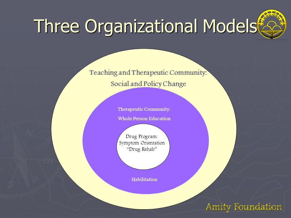 Three Organizational Models Teaching and Therapeutic Community: Social and Policy Change Drug Program: Symptom Orientation Drug Rehab Therapeutic Community: Whole Person Education Habilitation