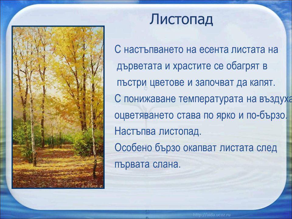 Листопад С настъпването на есента листата на дърветата и храстите се обагрят в пъстри цветове и започват да капят. С понижаване температурата на възду