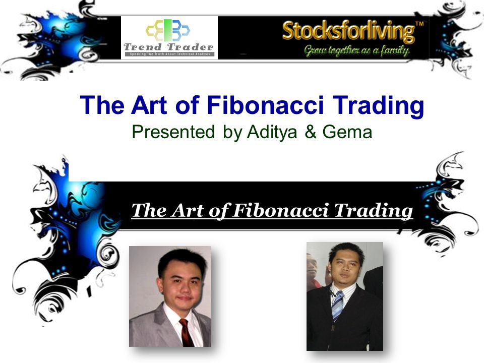 Chart © 2008 Finance Chart Applying Fibonacci