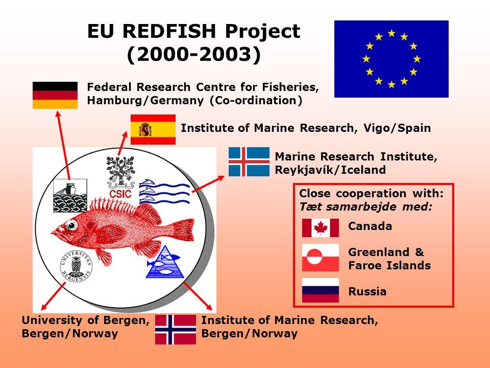 Canada Greenland & Faroe Islands Russia Federal Research Centre for Fisheries, Hamburg/Germany (Co-ordination) Institute of Marine Research, Vigo/Spai