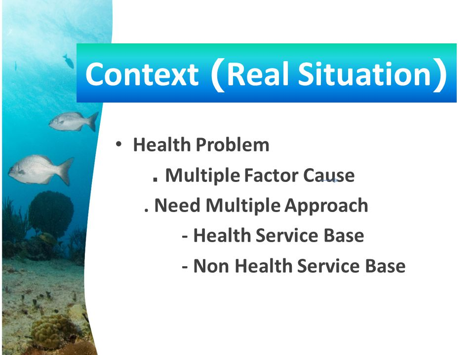 • Health Problem. Multiple Factor Cause. Need Multiple Approach - Health Service Base - Non Health Service Base Context (Real Situation)