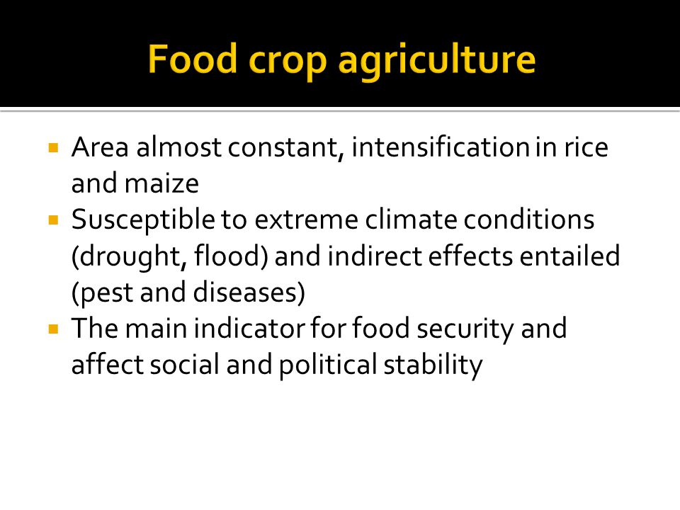  Area almost constant, intensification in rice and maize  Susceptible to extreme climate conditions (drought, flood) and indirect effects entailed (pest and diseases)  The main indicator for food security and affect social and political stability