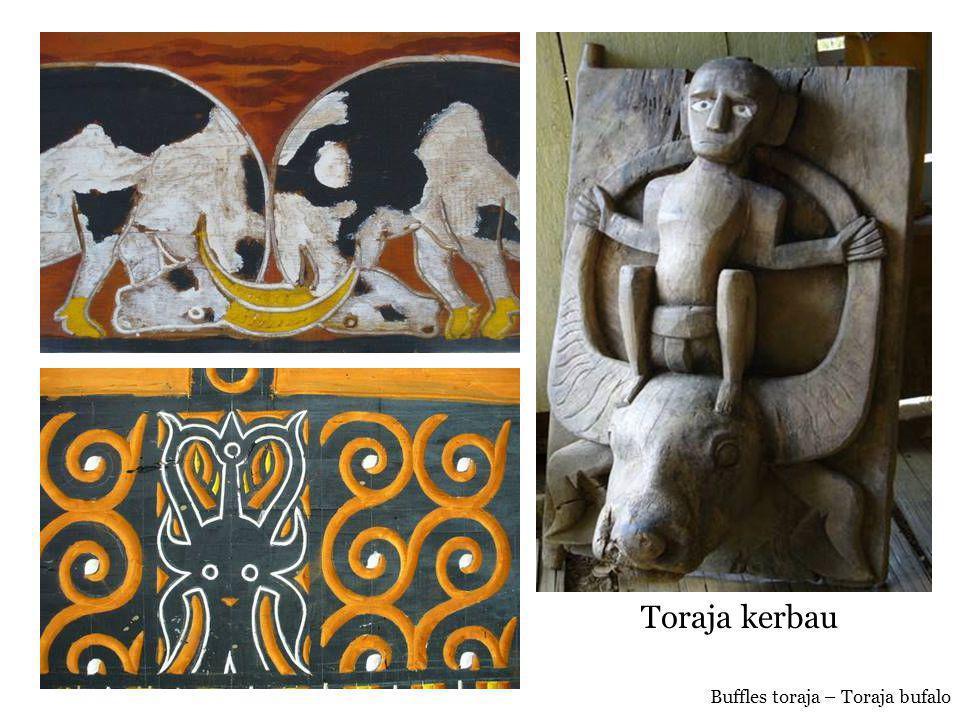 Toraja kerbau Buffles toraja – Toraja bufalo