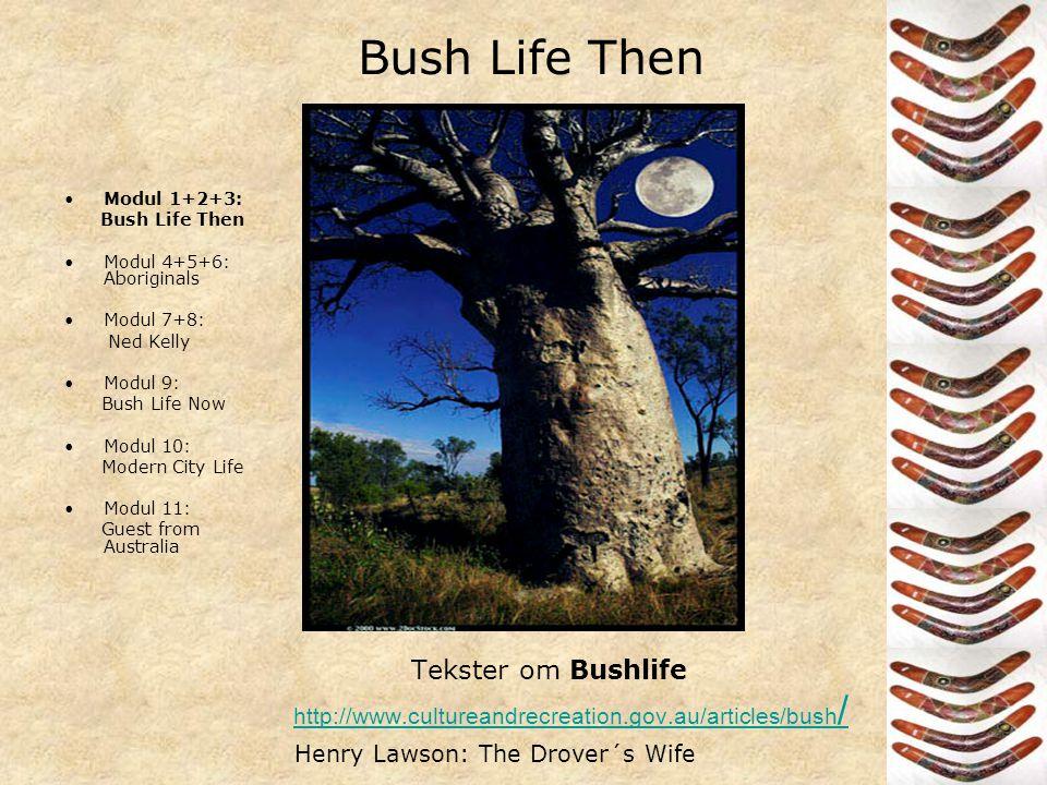 Australia •Modul 1+2+3: Bush Life Then •Modul 4+5+6 : Aboriginals •Modul 7+8: Ned Kelly •Modul 9: Bush Life Now •Modul 10: Modern City Life •Modul 11: Guest from Australia