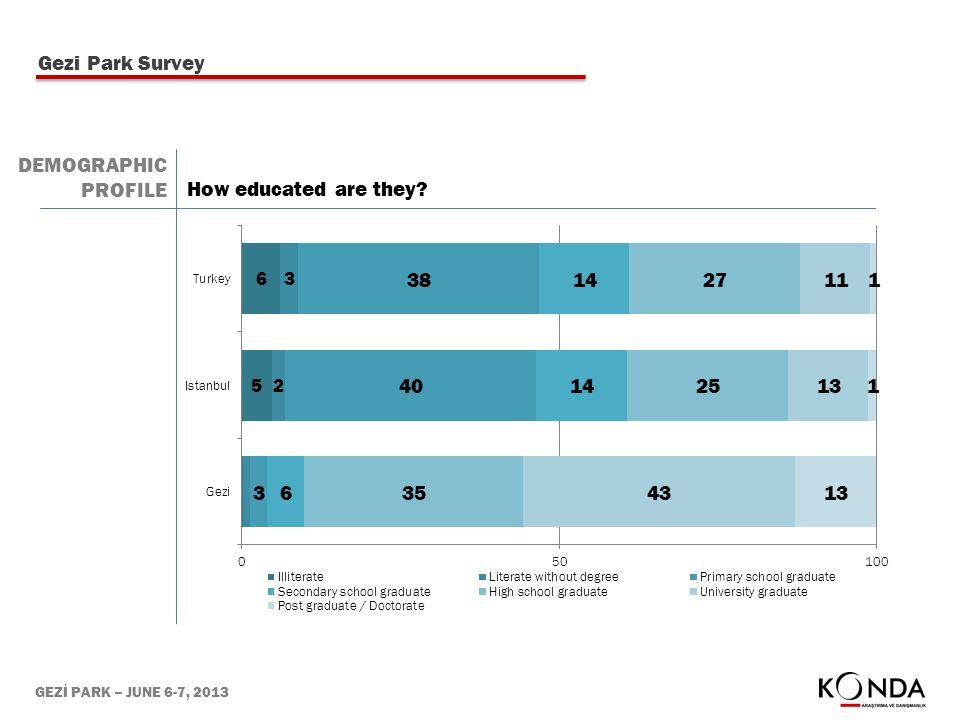 GEZİ PARK – JUNE 6-7, 2013 How educated are they? Gezi Park Survey DEMOGRAPHIC PROFILE