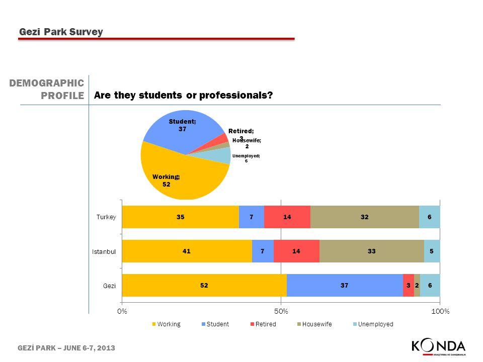 GEZİ PARK – JUNE 6-7, 2013 Gezi Park Survey DEMOGRAPHIC PROFILE Are they students or professionals