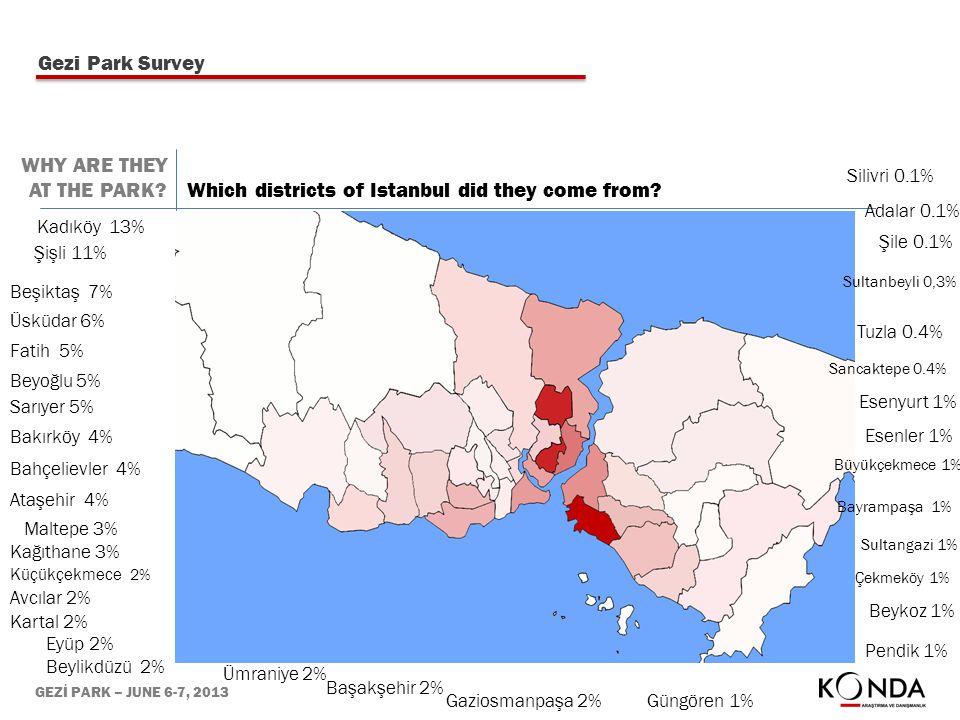 GEZİ PARK – JUNE 6-7, 2013 Kadıköy 13% Şişli 11% Beşiktaş 7% Üsküdar 6% Fatih 5% Beyoğlu 5% Sarıyer 5% Bakırköy 4% Bahçelievler 4% Ataşehir 4% Maltepe