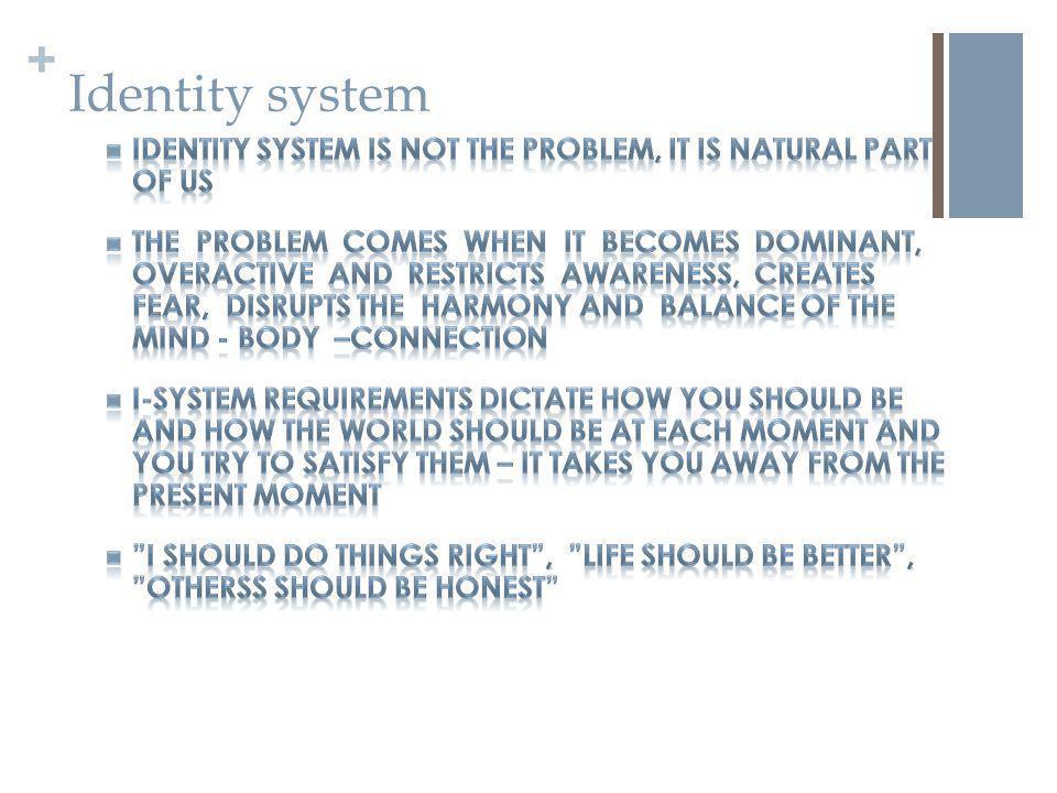 + Identity system