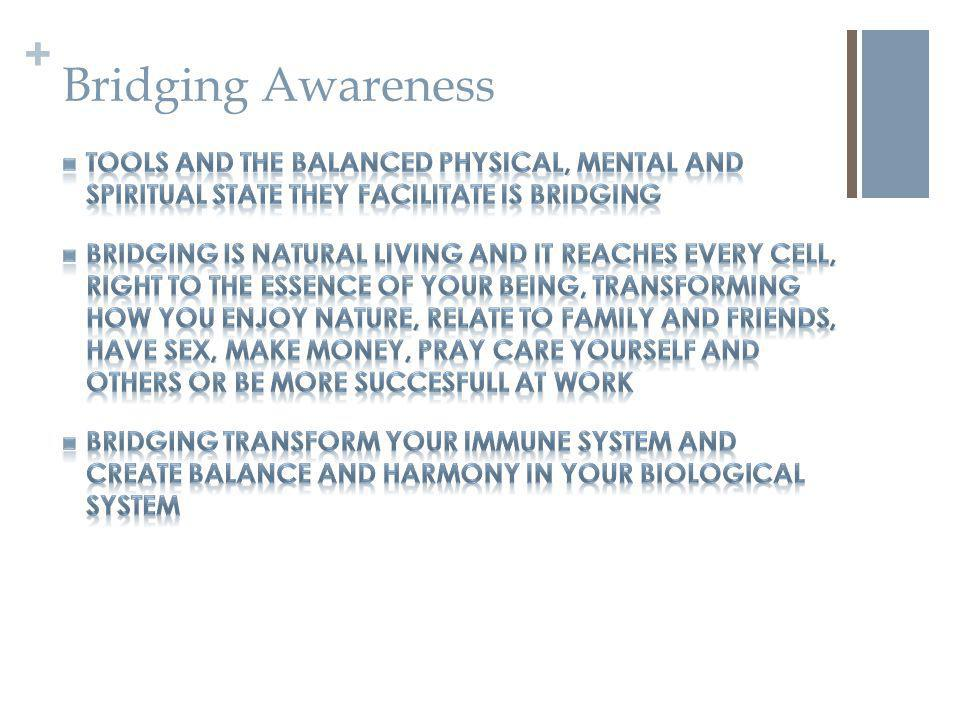 + Bridging Awareness