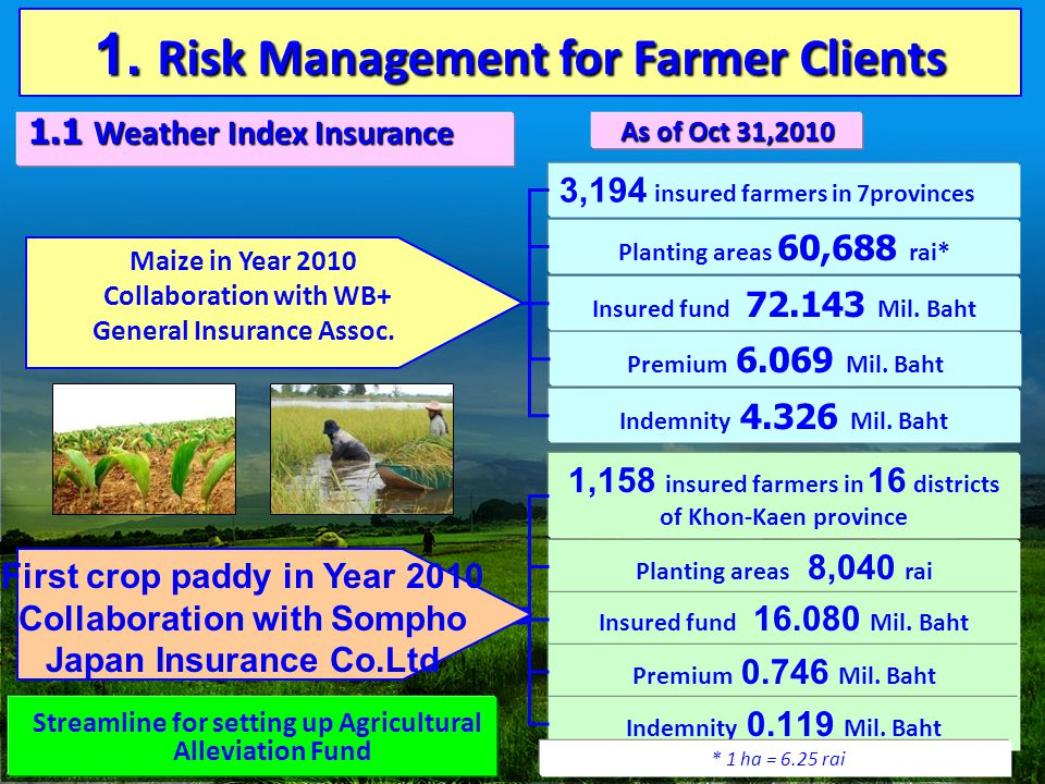 1. Risk Management for Farmer Clients 1.1 Weather Index Insurance 3,194 insured farmers in 7provinces Planting areas 60,688 rai* Insured fund 72.143 M