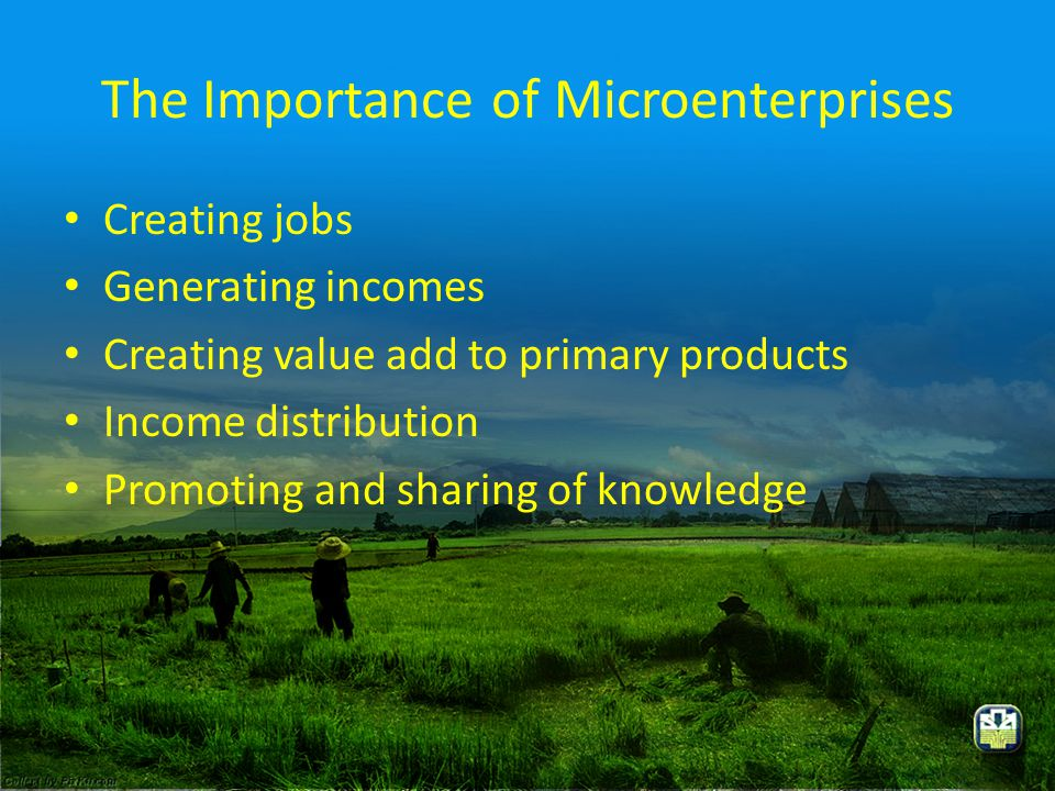 The Importance of Microenterprises • Creating jobs • Generating incomes • Creating value add to primary products • Income distribution • Promoting and