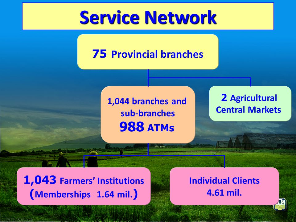Service Network 75 Provincial branches 1,044 branches and sub-branches 988 ATMs 1,043 Farmers' Institutions ( Memberships 1.64 mil. ) Individual Clien