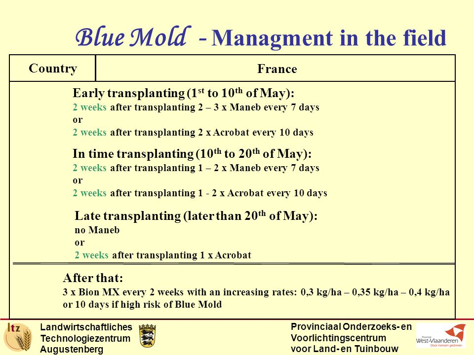 Landwirtschaftliches Technologiezentrum Augustenberg Provinciaal Onderzoeks- en Voorlichtingscentrum voor Land- en Tuinbouw Blue Mold - Managment in the field Country France Early transplanting (1 st to 10 th of May): 2 weeks after transplanting 2 – 3 x Maneb every 7 days or 2 weeks after transplanting 2 x Acrobat every 10 days In time transplanting (10 th to 20 th of May): 2 weeks after transplanting 1 – 2 x Maneb every 7 days or 2 weeks after transplanting 1 - 2 x Acrobat every 10 days Late transplanting (later than 20 th of May): no Maneb or 2 weeks after transplanting 1 x Acrobat After that: 3 x Bion MX every 2 weeks with an increasing rates: 0,3 kg/ha – 0,35 kg/ha – 0,4 kg/ha or 10 days if high risk of Blue Mold